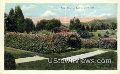 Rose Pergola - Los Angeles, California CA Postcard