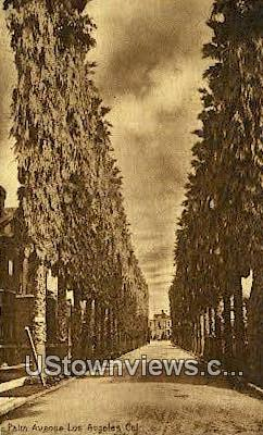 Palm Ave. - Los Angeles, California CA Postcard