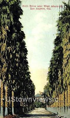 Palm Drive, West Adams St. - Los Angeles, California CA Postcard