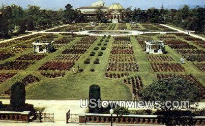 Rose Garden, Exposition Park - Los Angeles, California CA Postcard