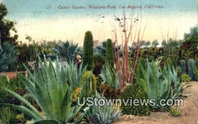 Cactus Garden, Westlake Park - Los Angeles, California CA Postcard