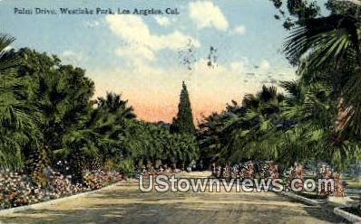 Palm Drive, Westlake Park - Los Angeles, California CA Postcard