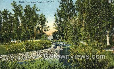 Lily Pond, Lincoln Park - Los Angeles, California CA Postcard