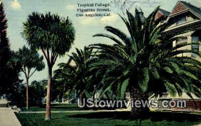 Figuerao Street - Los Angeles, California CA Postcard
