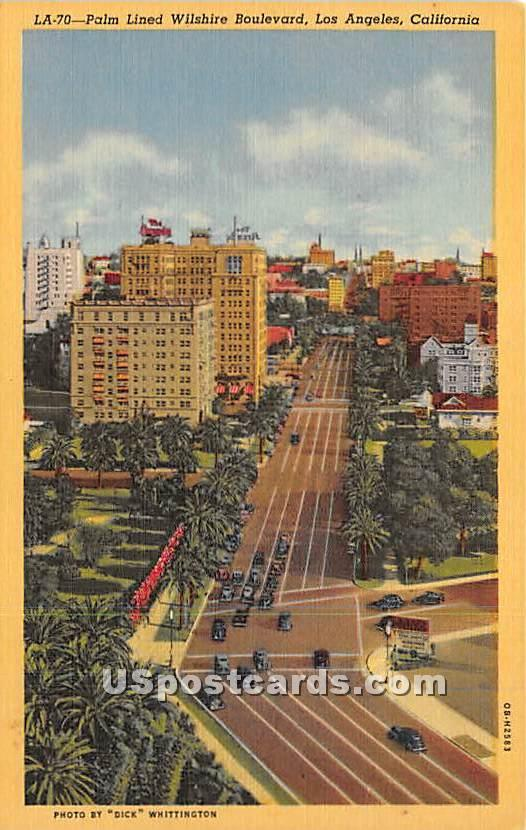 Palm Lined Wilshire Boulevard - Los Angeles, California CA Postcard