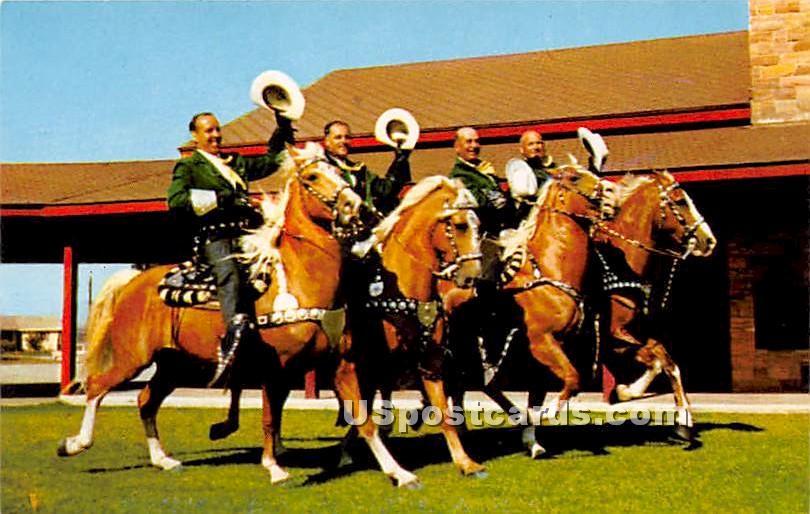 Famous Long Beach Mounted Police - California CA Postcard