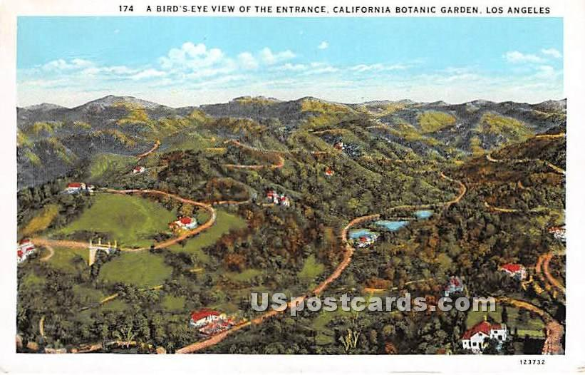 California Botanic Garden - Los Angeles Postcard