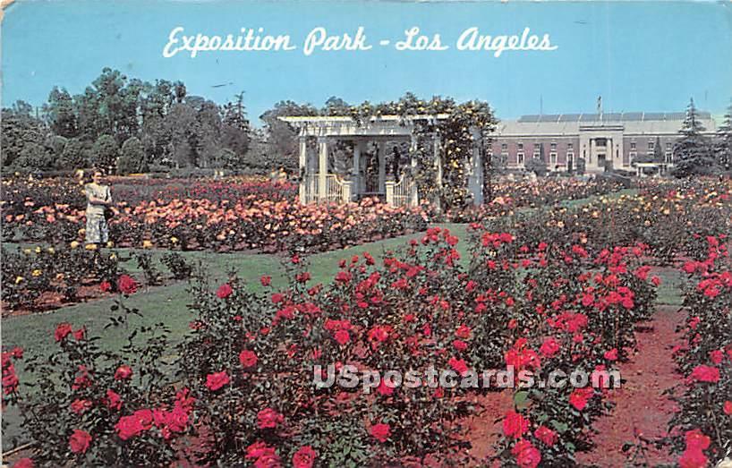 Exposition Park - Los Angeles, California CA Postcard