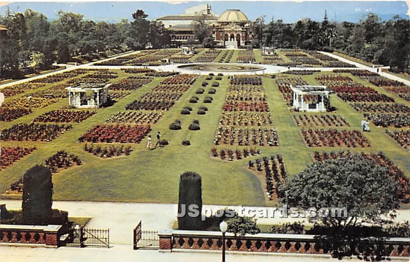 Rose Garden, Exposition Park - Los Angeles, California CA Postcard