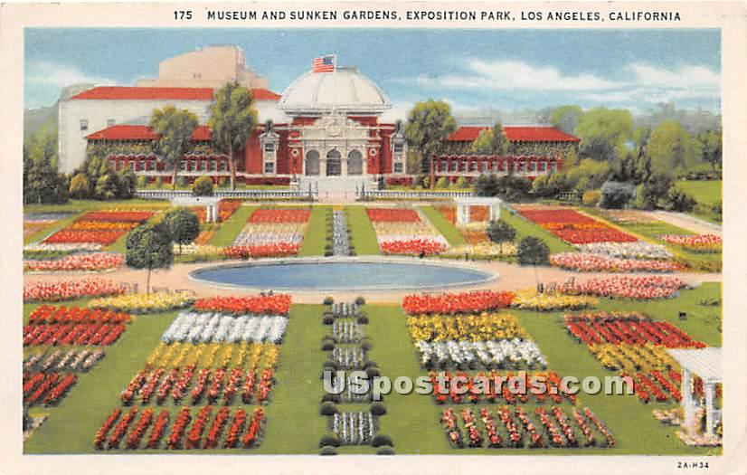 Museum & Sunken Gardens, Exposition Park - Los Angeles, California CA Postcard