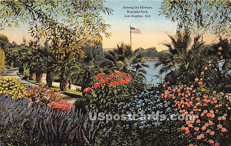 Flowers, Westlake Park - Los Angeles, California CA Postcard