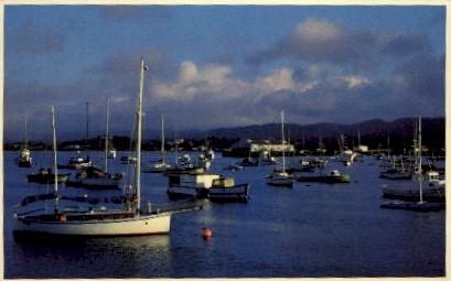 Monterey Harbor - California CA Postcard