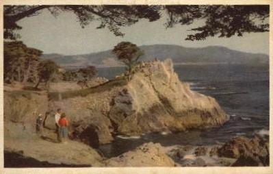 Seventeen Mile Drive - Monterey, California CA Postcard