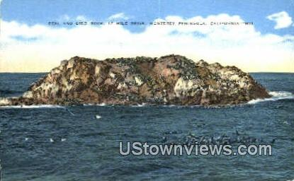 Seal & Bird Rock - Monterey Peninsula, California CA Postcard