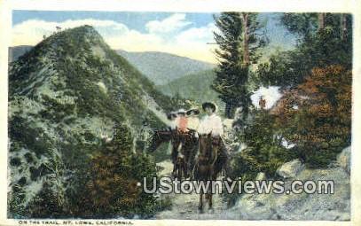Trail - Mt. Lowe, California CA Postcard