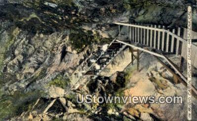 Rubio Canyon - Mt. Lowe, California CA Postcard