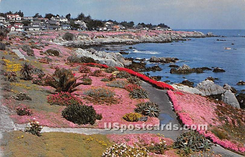 Lover's Point - Monterey Peninsula, California CA Postcard