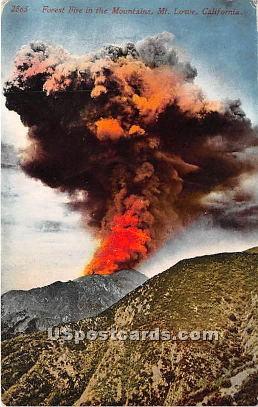 Forest Fire - Mt. Lowe, California CA Postcard