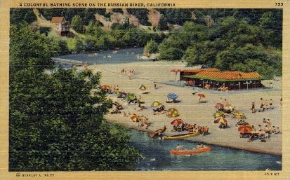 Bathing on the Russian River - MIsc, California CA Postcard