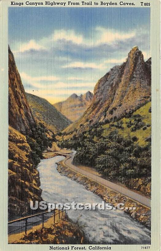 Kings Canyon Highway - National Forest, California CA Postcard