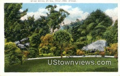 Moss Wood Park - Oakland, California CA Postcard