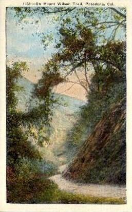 On Mount Wilson Trail - Pasadena, California CA Postcard