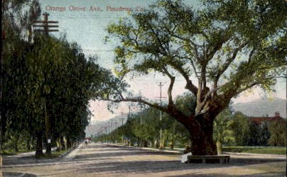 Orange Grove Ave. - Pasadena, California CA Postcard