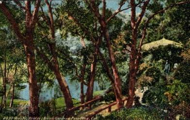 Rustic Bridge, Busch Gardens - Pasadena, California CA Postcard