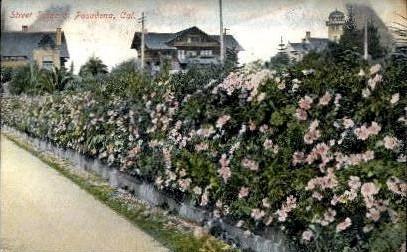 Street Scene - Pasadena, California CA Postcard