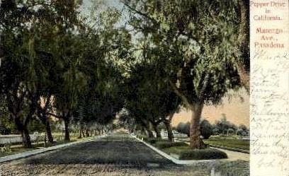 Pepper Drive in California - Pasadena Postcard