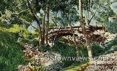 Busch's Gardens' - Pasadena, California CA Postcard