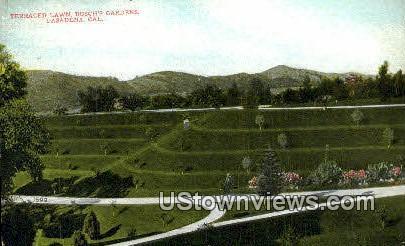 Terraced Lawn, Busch's Gardens - Pasadena, California CA Postcard
