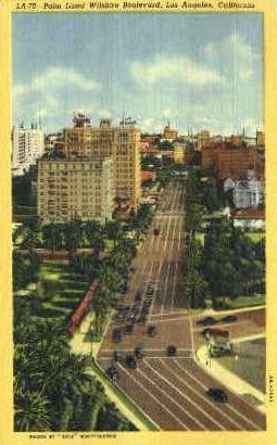 Palm Lined Wilshire Boulevard - Los Angeles, California CA Postcard