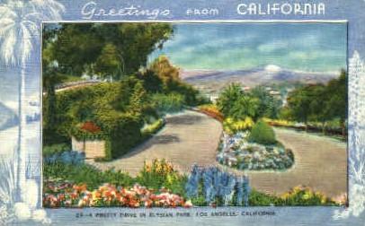 A Pretty Drive in Elysian Park - Los Angeles, California CA Postcard