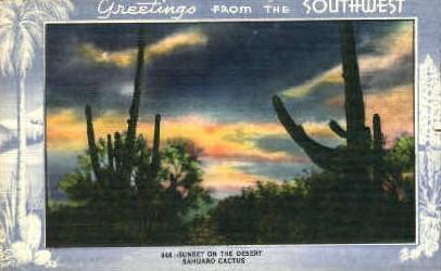 Sunset on the Desert, Sahuaro Cactus - MIsc, California CA Postcard