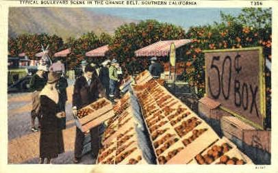 Typical Boulevard Scene - MIsc, California CA Postcard