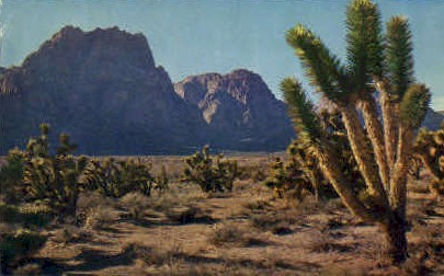 Western Desert - MIsc, California CA Postcard