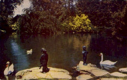 The Frog and Duck Babies - Glendale, California CA Postcard