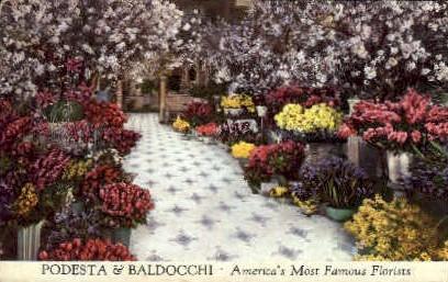 Podesta & Baldocchi Florists - San Francisco, California CA Postcard