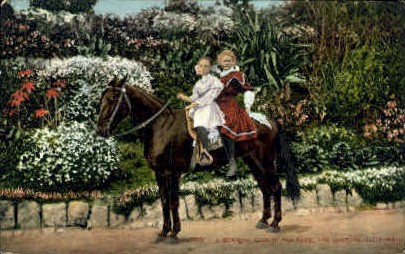 A Mourning Ride in the Park - Los Angeles, California CA Postcard