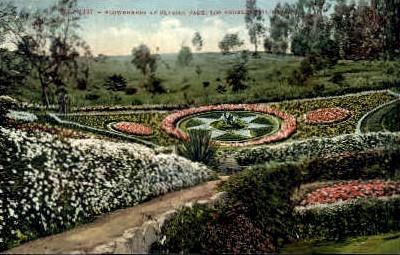 Flowerbeads at Elysian Park - Los Angeles, California CA Postcard