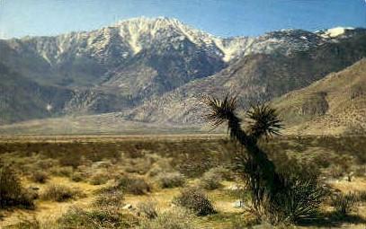 North Face of Jacinto Peak - MIsc, California CA Postcard