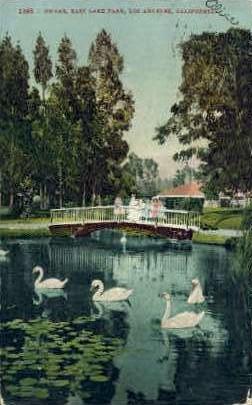 Swans, East Lake Park - Los Angeles, California CA Postcard