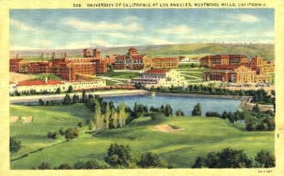 University of California  - Los Angeles Postcard