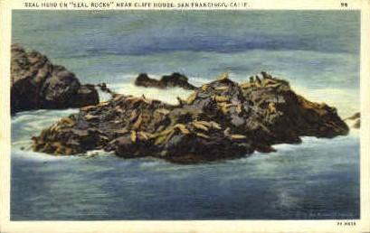 Seal Herd on Seal Rocks - San Francisco, California CA Postcard