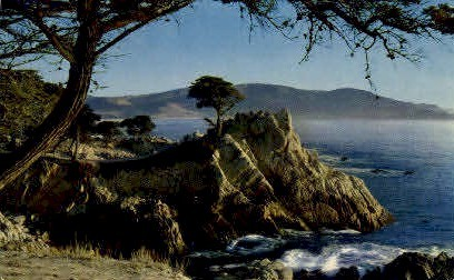 Midway Point - Monterey Peninsula, California CA Postcard