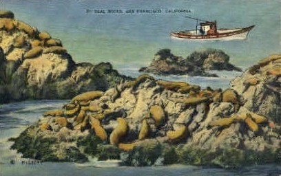 Seal Rocks - San Francisco, California CA Postcard
