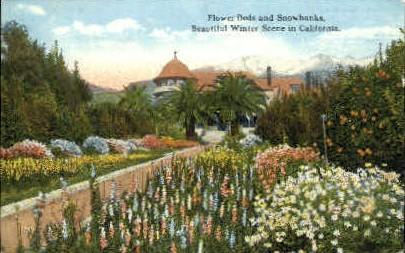 Misc, California, CA Postcard