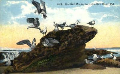 La Jolla - San Diego, California CA Postcard