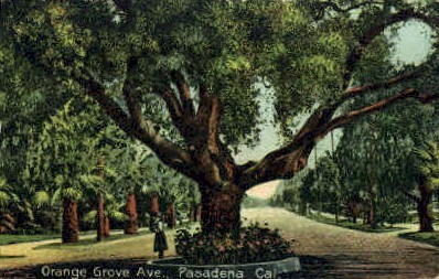 Pasadena, California, CA Postcard